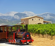 mallorca-wine-tours-18