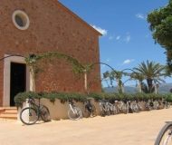 mallorca-wine-tours-bike-tour-01