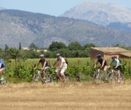 mallorca-wine-tours-bike-tour-10