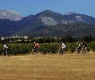 mallorca-wine-tours-bike-tour